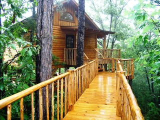 Tree Houses for the Grown-ups