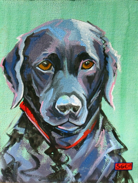Color Dogs portraits (and Color Cats!) eclectic artwork