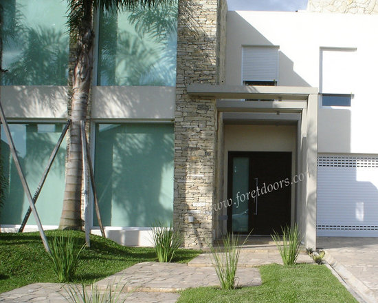 Modern front entry doors / contemporary front entry doors - Solid wood contemporary entry door with sidelight and stainless steel pull