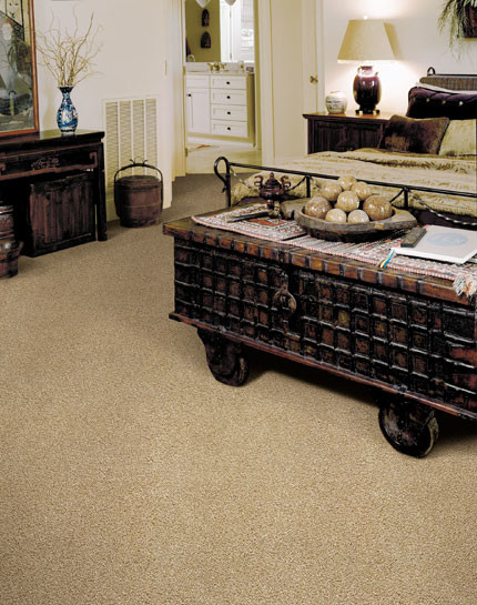 Royalty Carpets eclectic-carpet-flooring