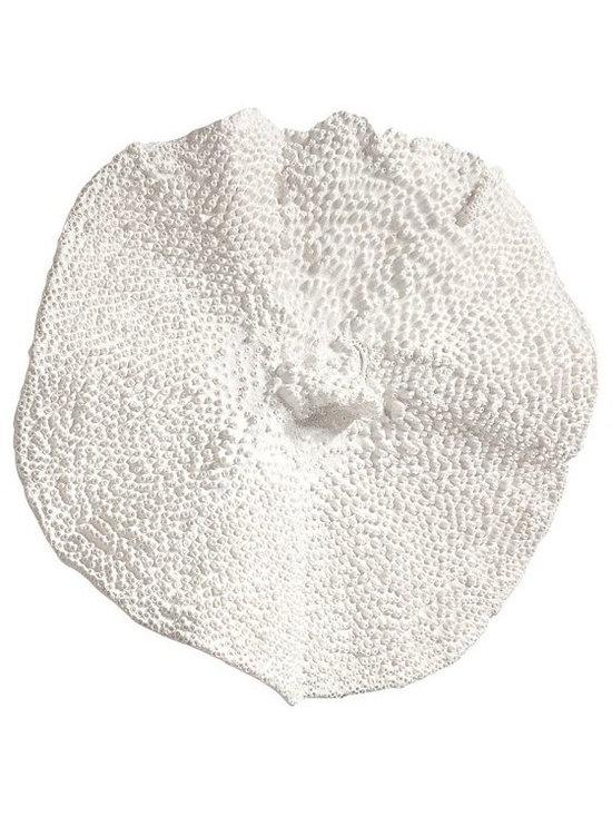 White Circle Coral -