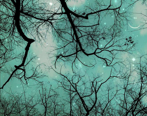 Winter Teal Christmas Sky by Raceytay contemporary-artwork