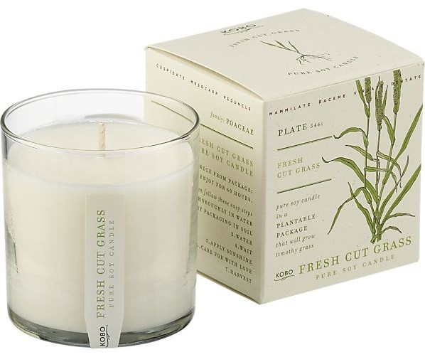 Scented Candle, Fresh Cut Grass contemporary-candles