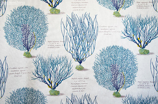 Blue coral sea fan fabric documentary print - Beach Style - Upholstery Fabric - portland maine ...
