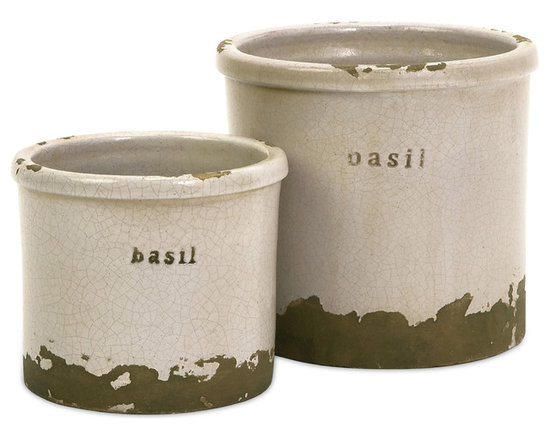 iMax - Basil Herb Pots, Set of 2 - Perfectly sized, this set of two Basil Herb pots is made of red clay and kiln fired to perfection. Finished in a white crackle glaze, rough edges are purposely exposed to add character.