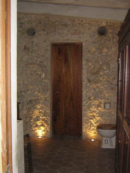 Color ideas for a bathroom with a natural rock wall for 1890 bathroom design