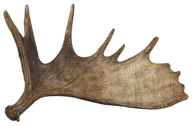 Regina Andrew Moose Antler - traditional - accessories and decor ...