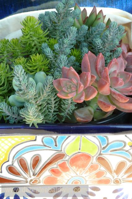 Succulents in Talavera pots eclectic-outdoor-pots-and-planters