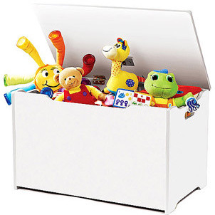 Tot Tutors Toy Box Traditional Kids Storage Benches