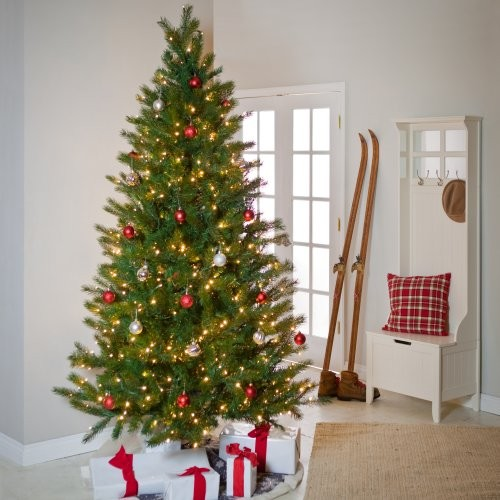 Decorating Ideas > Brite Ideas Shake To Shape Fir Medium Prelit Christmas  ~ 213040_Houzz Christmas Decorating Ideas