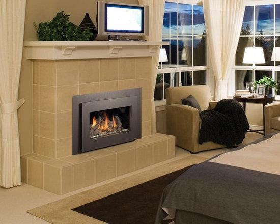 Fireplace Xtrordinair by Travis Industries - FPX 31 DVI Basic GreenSmart Gas Insert -