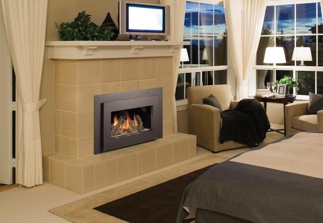 FPX 31 DVI Basic GreenSmart Gas Insert modern-indoor-fireplaces