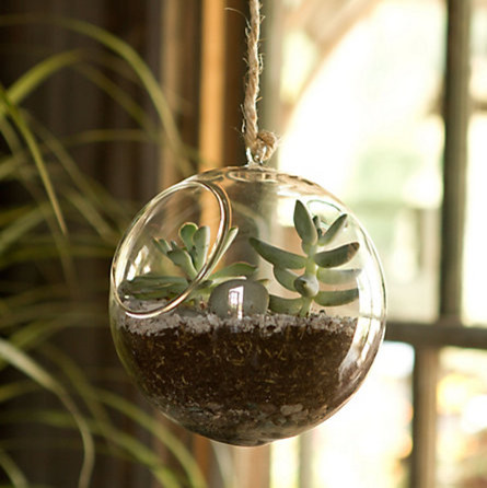 Glass Hanging Orb contemporary-indoor-pots-and-planters