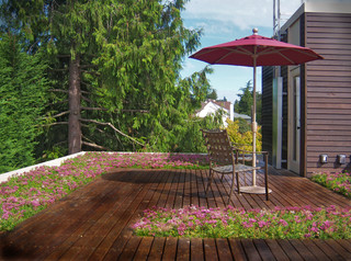 deck maintenance can extend the life of your deck