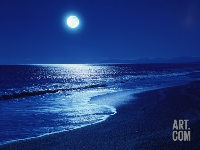 Full Moon Over the Sea Photographic Print contemporary-prints-and-posters