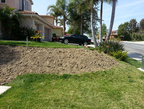 Need help landscaping small slope in front yard for Help me landscape my front yard