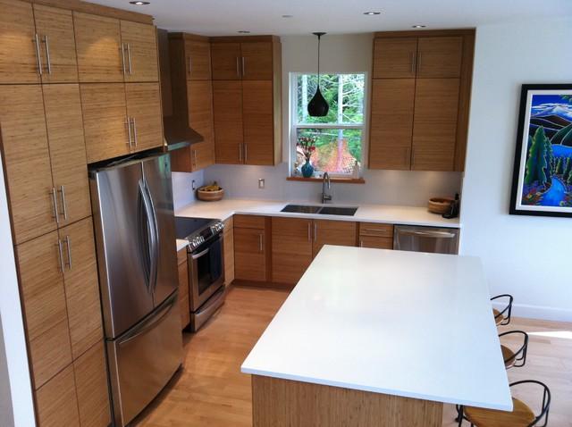 Kitchen Craft Cabinetry Vancouver modern-kitchen