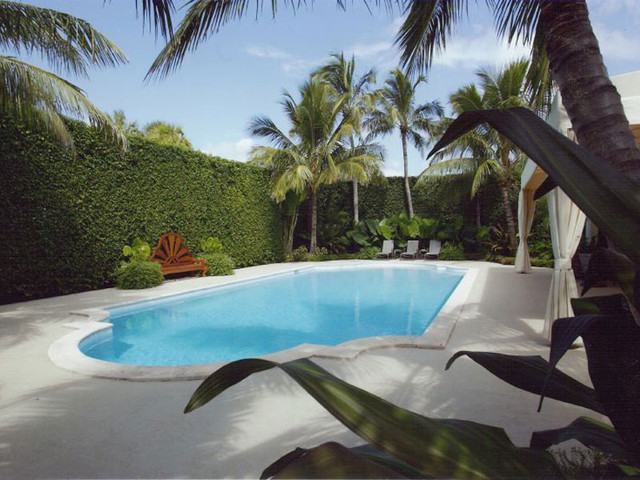 Brown Davis Interiors, Inc. tropical pool
