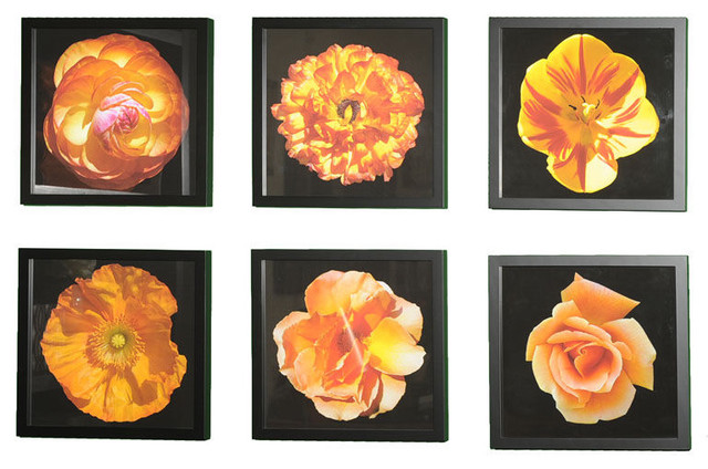 Floral Blossom Photos, Framed artwork