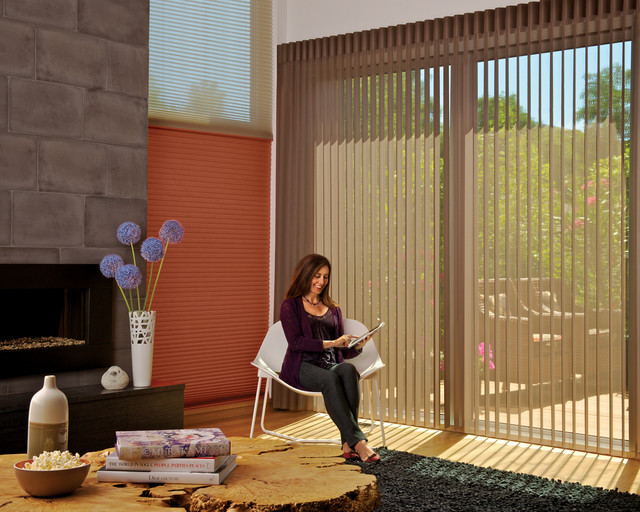 Hunter Douglas Vertical Blinds Motorized Window Coverings Two Blind Guys Contemporary