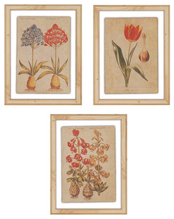 Linen Botanical Prints traditional-artwork