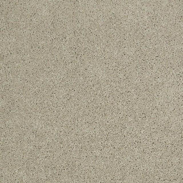 Tigressa Carpet Reviews Carpet Vidalondon