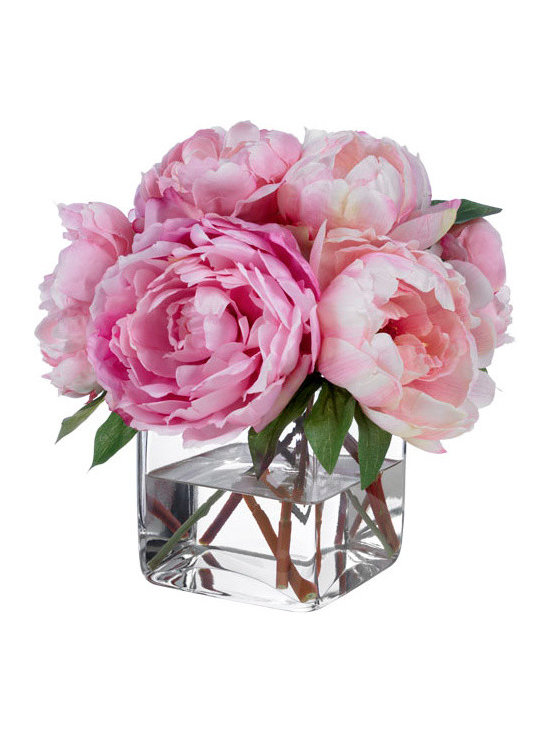 Pink Champagne Peonies -