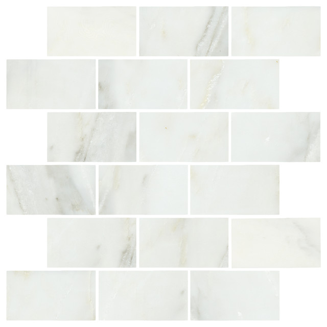 Lansdale Carrara Mosaics traditional-tile