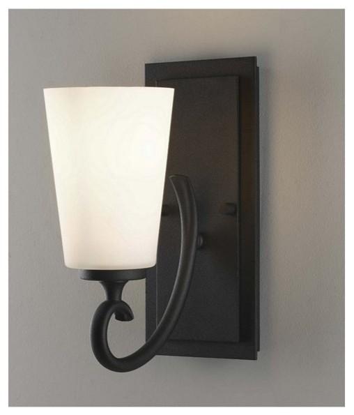 1 Bulb Black Vanity contemporary-bathroom-vanity-lighting