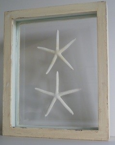Double Framed Starfish tropical artwork