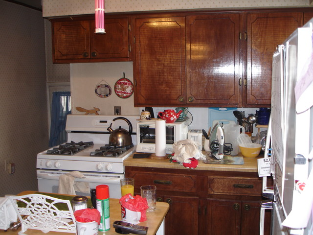 Kitchen Addition Built To Entertain eclectic