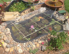 You can make an outdoor fish paradise of your own, for less than ...