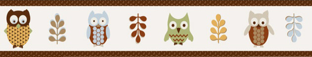 Night Owl Wall Paper Border by Sweet Jojo Designs traditional-kids-decor