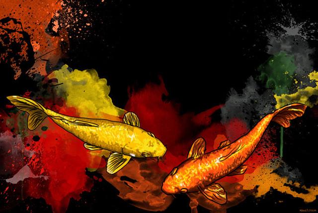 Maxwell dickson koi fish asian graffiti pop art canvas for Koi prints canvas