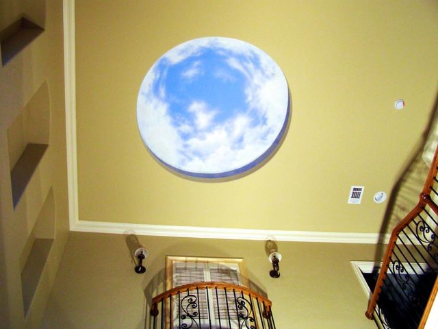 Murals: Commercial & Residential