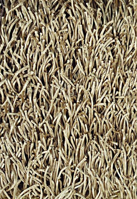 Metallic Shag Contemporary Rugs Orange County By
