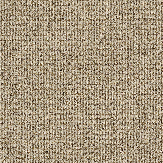 Laugh Together Carpet Oyster Pearl Contemporary Area