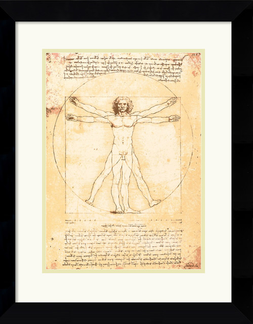 Proportions of the Human Figure (Vitruvian Man) Framed Print traditional-prints-and-posters