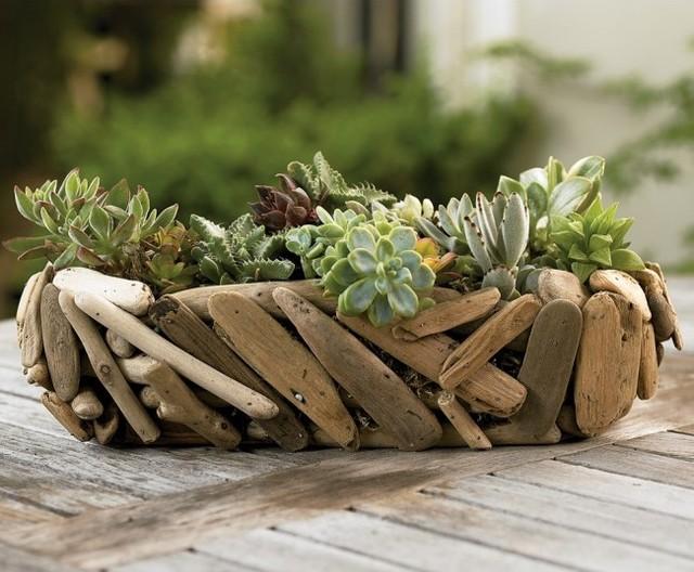 Driftwood Succulent Garden Basket eclectic-plants