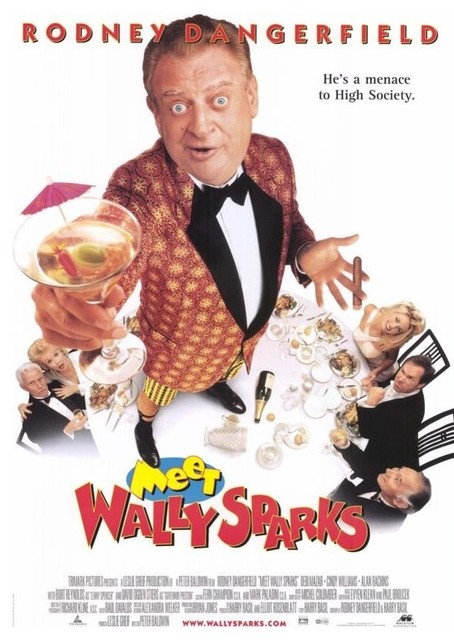 Meet Wally Sparks 11 x 17 Movie Poster - Style A prints-and-posters