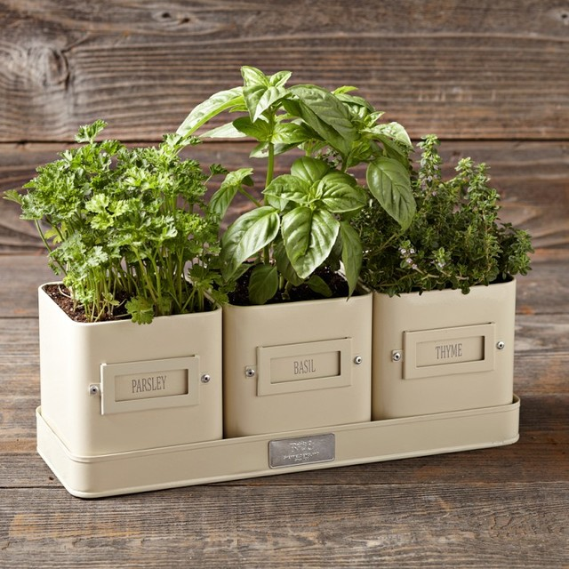 Herb pot with tray transitional indoor pots and Kitchen windowsill herb pots