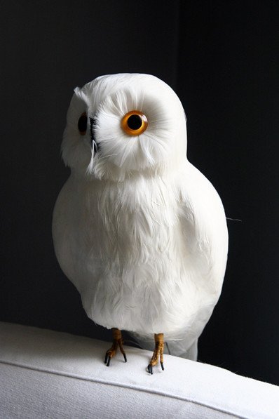 Traditional Home Decor White Owl