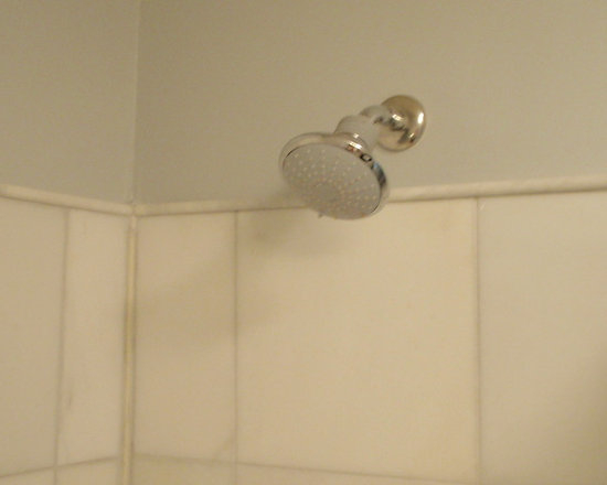 GROHE - Contemporary Bathroom Remodel with mosaic and porcelain tile - GROHE StarLight Chrome Bau 3-Spray Shower Massager