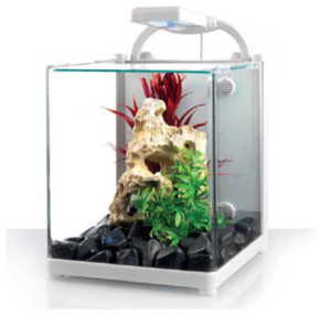 Love Fish Nano 13 Litre Tank contemporary-aquariums-and-fish-tanks