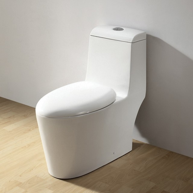Ariel contemporary european toilet co1042 modern for Photo toilette moderne