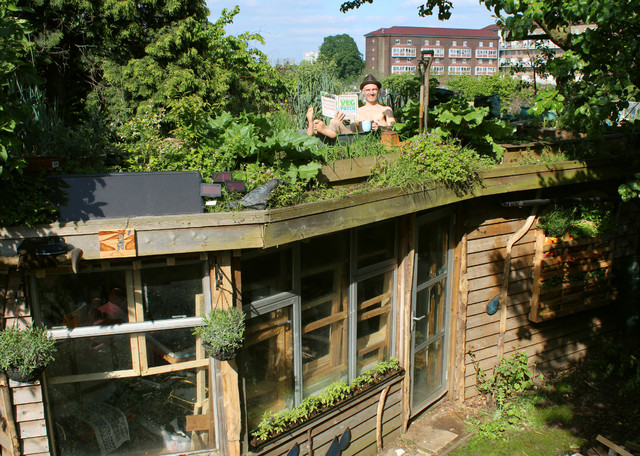 Allotment Roof Shed - Rustic - London - by The Shed Builder