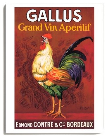 Gallus - 18 x 24 in. traditional-artwork