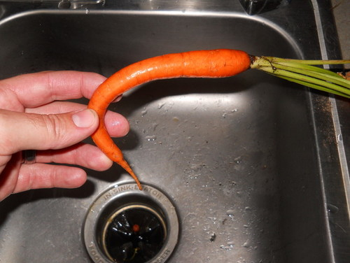 how to fix limp carrots