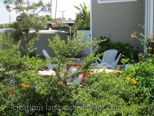 Ca native front yard in costa mesa ca for Mesa landscape architects