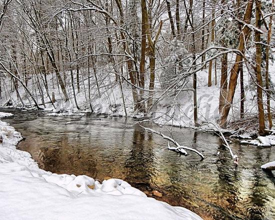 """""""Winter Waters"""" - by Bepa studio -"""
